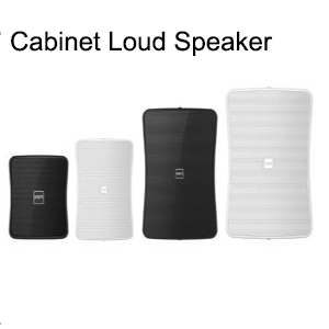 Compact Indoor/Outdoor Professional Loudspeaker